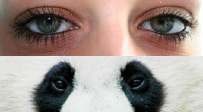 cara atasi mata panda